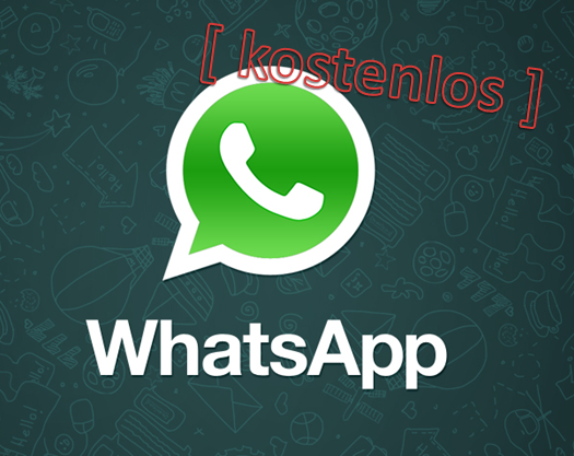 WhatsApp Messenger Logo1