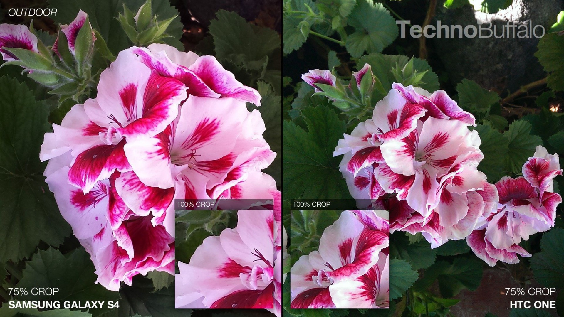Samsung-Galaxy-S4-vs-HTC-One-Camera-Comparison-Outdoor-Flowers