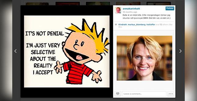 Schwedens IT-Ministerin von dortiger Piratenpartei verpfiffen: Copyright!