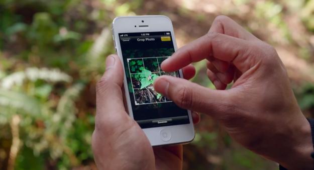 Top 5 Fotografie-Apps für iPhone, iPod und iPad