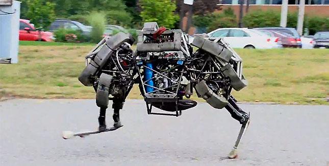 WildCat: Weltweit schnellster Roboter von der Leine gelassen