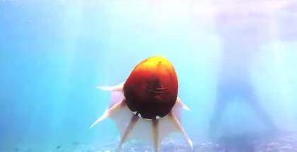 Octopus-Roboter-c9