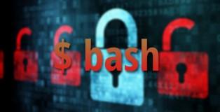 Shellshock-Exploit-OS-X