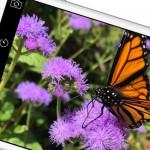 iPhone 6 & 6 Plus ohne Simlock und mit Vertrag