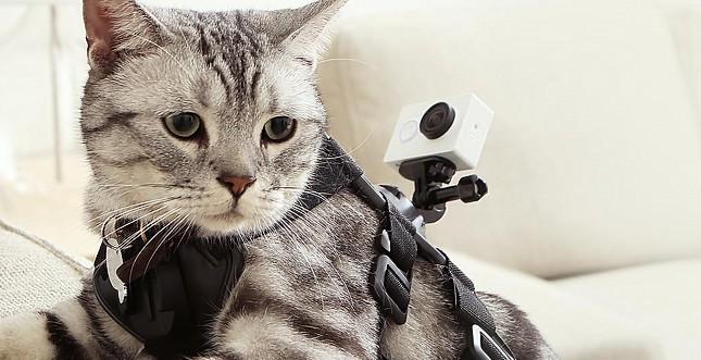 Xiaomi macht GoPro Helmkamera billige Konkurrenz