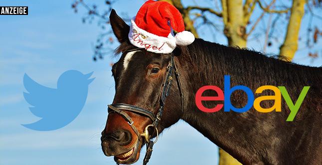Geschenksuche mal anders: Geheimtipps vom eBay-Weihnachtswichtel