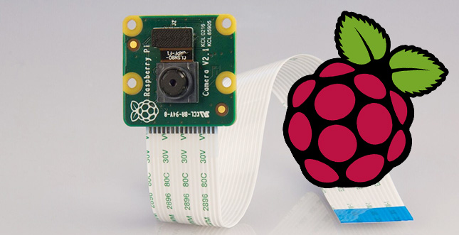 Raspberry Pi Cam V2: Full HD Video & 8 MP Fotos & Nachtsicht